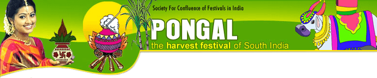 Pongal-The Harvest Festival