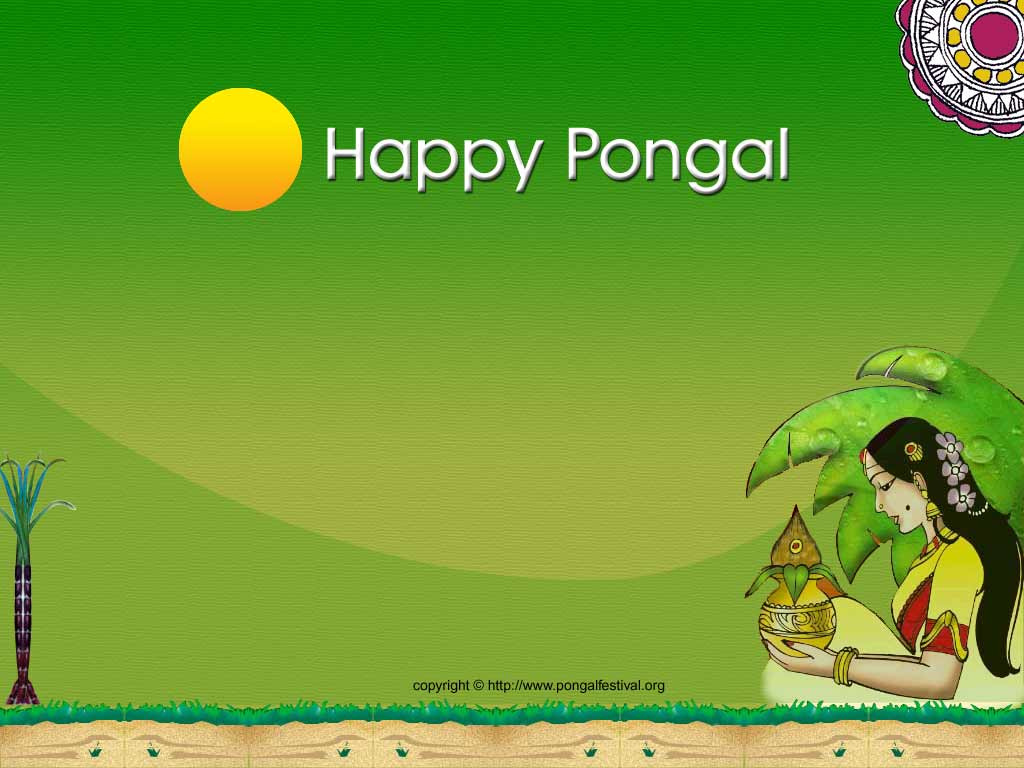 Pongalo pongal pongal wallpapers pongal wallpaper kristyandbryce Images