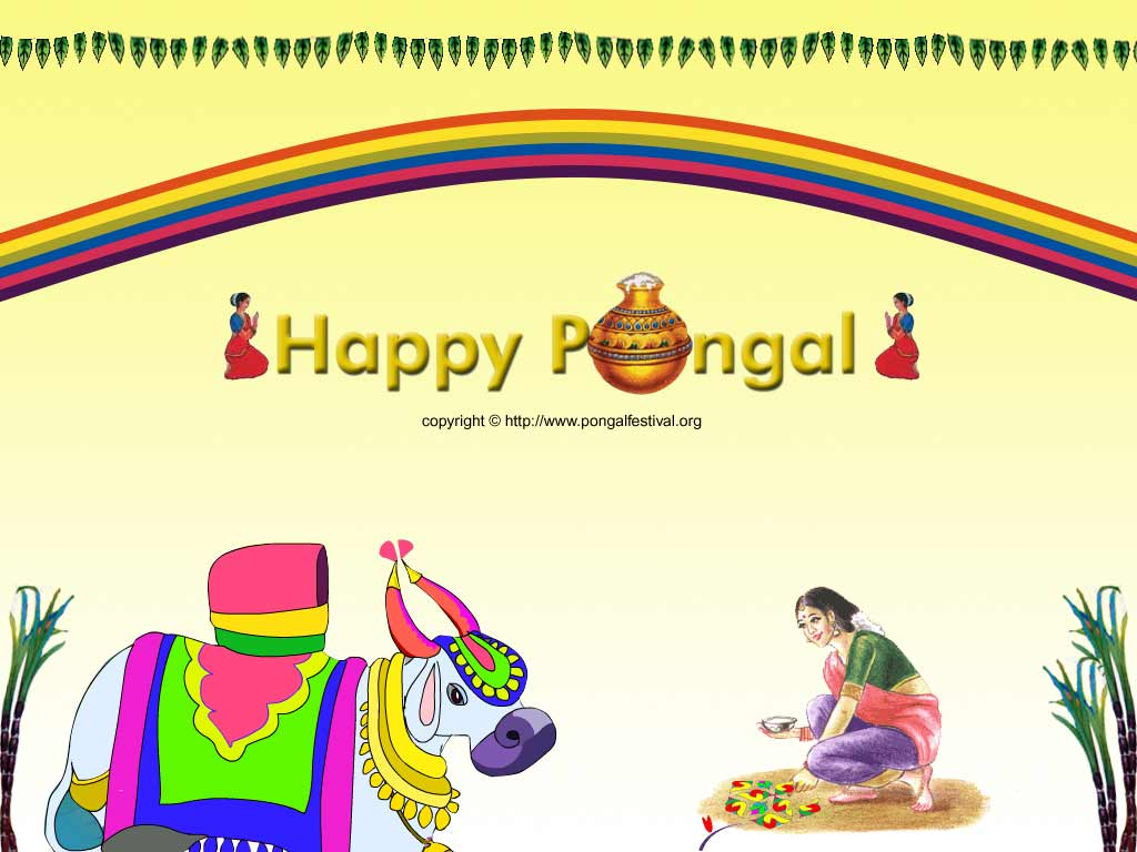 Pongal and Sankranti Wallpapers