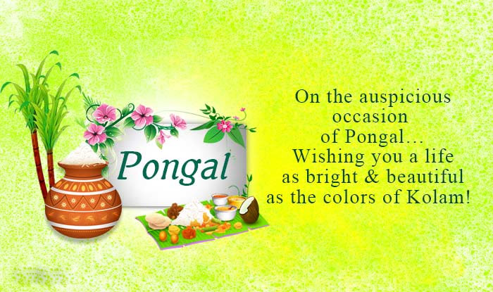 Pongal greetings pongalfestival may the festival of the harvest season be one that brings along with it all thats best and everything youre so deserving of have a memorable pongal m4hsunfo