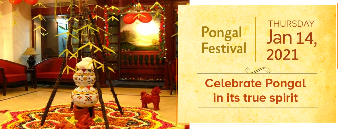 pongal  the festival of south india  pongalfestival org
