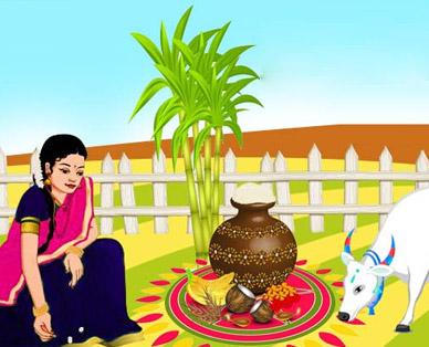 Pongal festival essay