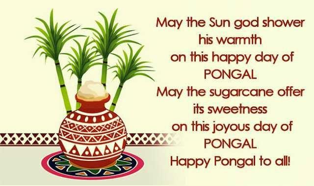 Pongal Greetings - Pongalfestival.org
